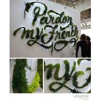 Wholesale Artificial green wall plants art plants wall plastic plant green wall decoration from china suppliers
