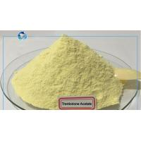 China Top Purity Above 98% Trenbolone Acetate Yellow Raw Powders For Bulking Lean Muscle for sale
