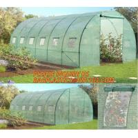 China polycarbonate plastic sheet agricultural mini garden green house,plastic walk in dome garden green house, SUPPLIES, PAC on sale