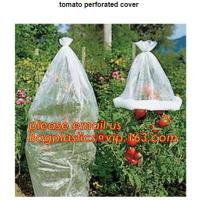 Wholesale Garden used tomato plastic film cover,high light transmittance solar control seeding nursery greenhouse covers,100% virg from china suppliers