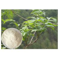 Wholesale Plant leaf extract powder , anti-alcohol Ampelopsis grossedentata Extract powder dietary supplement from china suppliers