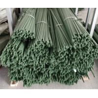 Wholesale Durable Plant Garden Support Green PE Coated Garden Stake from china suppliers