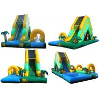 Wholesale Environmental Outdoor Inflatable Water Slides With Durable PVC Tarpaulin from china suppliers