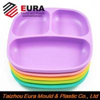 Wholesale EURA Zhejiang Taizhou plastic Snack Trays Mold/Mould manufacturer from china suppliers