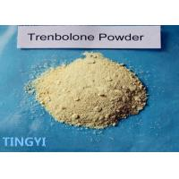 Buy cheap CAS: 10161-33-8 Trenbolone Base Steroid Powder Bulking Cycle For Muscle Growth from wholesalers