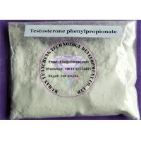 Buy cheap Testosterone Phenylpropionate Medication Steroids For Bulking , Muscle Mass Steroids CAS 1255-49-8 from Wholesalers