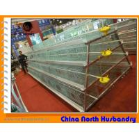 Wholesale High quality poultry farm equipment for sale from china suppliers