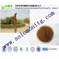 Wholesale cistanche tubulosa extract/cistanche salsa-Cistanche salsa (C.A.Mey.) G. Beck from china suppliers
