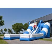 Wholesale Blue / White Tunnel Commercial Inflatable Slide Safety Giant Inflatable Slide Rental from china suppliers