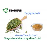 Wholesale Green tea extract antioxidant dietary supplement  Polyphenols 98% cas 84650-60-2 from china suppliers