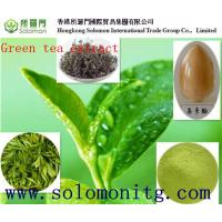 Wholesale 100% natural green tea extract egcg bulk supply -- Gamelliasinensis O. Ktze from china suppliers