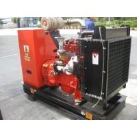 China 50KW 50Hz 380V Water-cooling Natural Gas Backup Generator, Stamford AC Alternator on sale