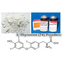 Wholesale CAS 51-48-9 Weight Loss Steroids Pro-hormone Powder L-Thyroxine(T4) from china suppliers