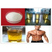 China Muscle Building Injectable Anabolic Steroids TNE 58-22-0 Testosterone Suspention for sale