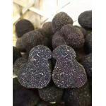 China Factory Price Premium Fresh Wild Black Truffle 1-3CM from China for sale