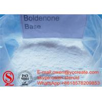 Wholesale Boldenone Base Cutting Cycle Muscle Building Steroids Raw Boldenone Without Ester from china suppliers