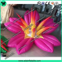 Wholesale Pink Inflatable Flower With LED Light,Event Party Inflatable Flower Customized from china suppliers