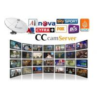 Wholesale Stable Cccam Pay Server Automatically Updated With DVB - S2 Receiver from china suppliers