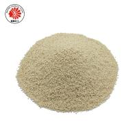 China China manufacturer textile fabricsfermentation process surface cleaning Granzyme 402 on sale