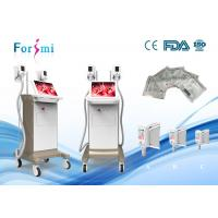 China 15 inch big screen body sculpting non surgical 1800 watt freezing fat cells stomach fat loss effeciently salon use on sale