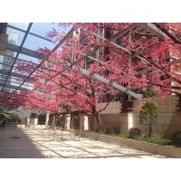 Wholesale silk cherry blossom tree plastic accassion indoor Artificial Plastic Pink Flowers from china suppliers