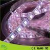 12V 3528 / 5050 / 2835 SMD Waterproof Led Tape Light , Led Ribbon Lights IP65 for sale