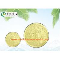 Wholesale Natural Sophora Japonica Extract , Pure Plant Extracts 95% Quercetin Antioxidant from china suppliers