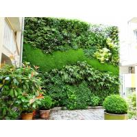 Fashionable Lively Artificial Moss Wall Plastic Vertical