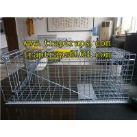 Quality Single Door Wire Rat Traps/Catch Rat Cage, Animal Traps for sale