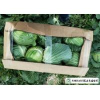 Wholesale Clean Healthy Raw Green Cabbage , Small Round Cabbage No Pollution from china suppliers
