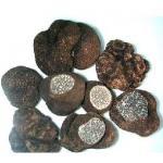 China Frozen Truffle/Black Truffle for sale
