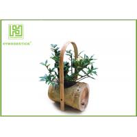 China Attractive Indoor Bamboo Flower Pots For Various Succulents Plants for sale