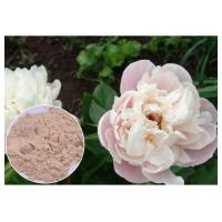 Wholesale Peony Root Powder Natural Anti Inflammatory Supplements Water Solvent CAS 23180 57 6 from china suppliers