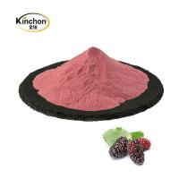 China Natural Mulberry Powder 100% Purity Organic Fruit Juice Powder Healthy 40-120 Mesh for sale