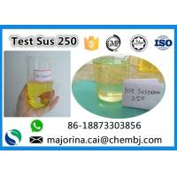 China Testosterone Sustanon 250 / Test Sus 250 Mix Test Steroids Yellow Oils on sale