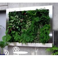 Wholesale Artificial Plant Wall for Landscaping Artificial Plant Wall building landscaping green wal from china suppliers