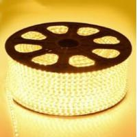 Wholesale 220V High Voltage LED Flexiable Strips SMD5050 2835 3528 RGB multicolor IP67 22LM from china suppliers
