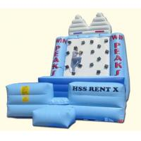 Wholesale Inflatable Iceberg Climbing from china suppliers