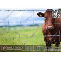 Wholesale Cattle Fence | Field Fencing | Grassland Fence | China Supplier from china suppliers
