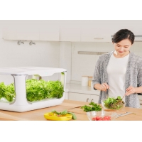 Wholesale Home Lettuce PP 24V Greenhouses Hydroponic Growing Systems from china suppliers
