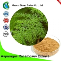 Wholesale 5/1 Asparagus Racemosus Plant Herbal Extract from china suppliers