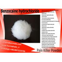 China Local Anesthetic Powder Benzocaine Raw Powder CAS 94-09-7 For Pain Relieving for sale