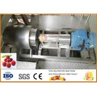 SS304 Turnkey Waxberry Beverage Processing Line CFM-B-07-2000 for sale