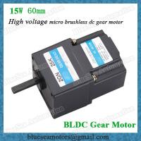 Wholesale 220V-230V high voltage 15W power bldc motor with motor driver from china suppliers