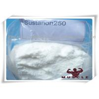 Wholesale Mixture Strongest Testosterone Steroids Testosterone Sustanon 250 Cutting Cycle Steroids from china suppliers