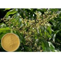 Wholesale Soapnut Saponin Cosmetic Raw Materials Soapberry Extract For Whitening Spot from china suppliers