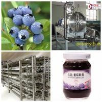 Blueberry Beverage Production Equipment SS304 Material Easy Operation for sale