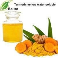 Wholesale Water Disperse Emulsification Turmeric Yellow Water Soluble from china suppliers