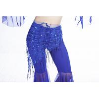 China Triangle Mesh Hip Scarf Belly Dance One Size Fringe Hip Scarf for sale