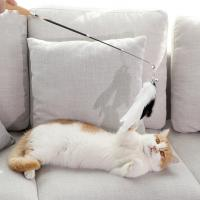 Buy cheap Flexible Cat Wand Toy , Multicolor Retractable Cat Toy Stick With Feather from wholesalers